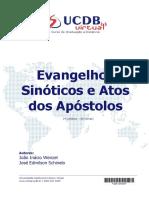 evangelhos_sinoticos_e_atos_dos__apostolos