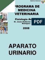 SISTEMA-URINARIO