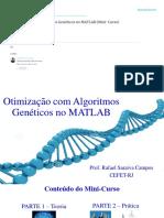 Otimizacao_com_Algoritmos_Geneticos_no_M.pdf
