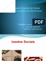 Isetos Sociais