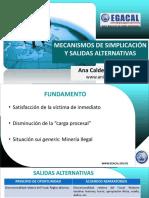 28-2-17_CAP_ACS_PPT_Mecanismos_de_simplificacion