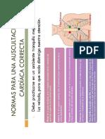 Auscultación cardiaca pediatria.docx
