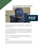 Por qué los monos no pueden hablar como los humanos.docx