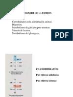 GLUCIDOS 09