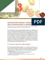 CARACTERIZACION FISIOLOGICA Y BIOQUIMICA DEL FRUTO DE GUAYABA DURANTE LA MADURACION - 2010