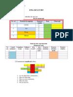 fisa_de_lucru_tabele.pdf