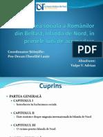 Prezentare-Vulpe-V-Adrian..pptx