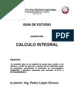 Guia Calculo Integral