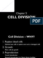 f4bioc5cell Division