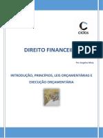 1. Introdução, princípios e leis orçamentárias