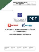 PL15-07 Plan Anual de Seguridad y Salud en el Trabajo 2020 Cajamarca V01-28-11-19
