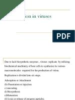 Replication in viruses (2)