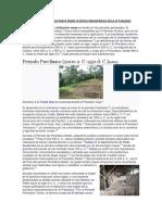 398086365-HISTORIA-DEL-PUEBLO-MAYA-DESDE-LA-EPOCA-PREHISPANICA-EN-LA-ACTUALIDAD-docx
