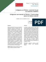 Gasparello Autonomías Indígenas