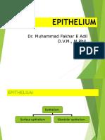 2.Epithelium.ppt