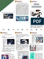 TRIPTICO inspeccion de DELITOS INFORMATICOS