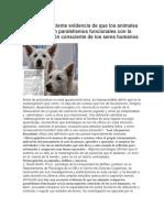 Documento1.docx