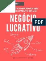 eBook Negocio Lucrativo