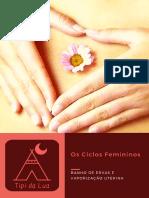 Os Ciclos Femininos
