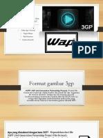 Format gambar 3 gp dan format gambar WAP kelompok 6.pptx