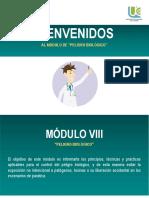 Modulo VIII. Peligro Biológico
