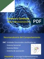 Cerebro y Conducta. Clase Psicología Médica..pptx