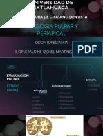 PATOLOGIA PULPAR.pdf
