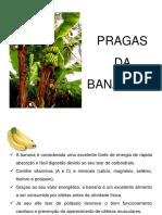 aula_banana