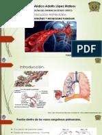 UCI Fisiologia