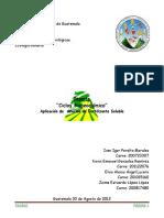271965198-Reporte-Ciclos-Biogeoquimicos.docx