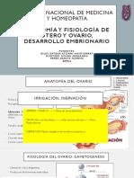 Anatomia y fisiologia utero y ovarios