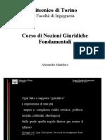 NGF_slide_Mantelero