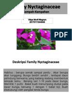 Famili Nyctagynaceae