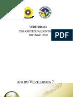 VERTEBRATA.pptx