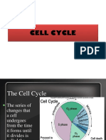 CELL CYCLE.ppt