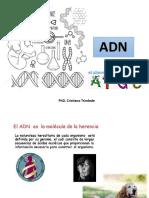2-3. DNA RNA.pptx