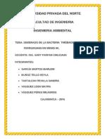 Informe t3 de Termodinamica