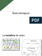 05_RedesBiologicas_A