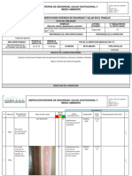 REG-007-ASSOMA-V1 REGISTRO DE INSPECCIONES INTERNAS 16-12-19