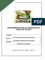 PROCEDIMIENTOS PARA LAS REUNIONESDEL COMITeDE CALIDAD