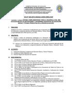 DIRECTIVA COMPLEMENTARIA  2020 DREA REVISADOFINAL 10 DIC