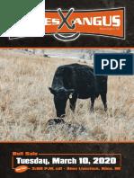 jamesangus catalog 2020