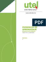 Desarrollo sustentable Semana3 Ev.docx