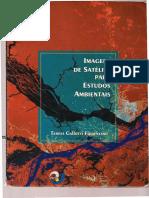 Florenzano0001.pdf