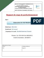 Rapport Perfectionnement Nihel Final 5