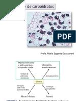 10_Biossíntese de Açúcares MEG_simplificada 2018.pdf