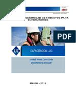 325929800-Charlas-de-5minutos-CSSM-Milpo.pdf