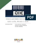 nota_tecnica_2019-2_Indicadores_Socio_PNADC_2018.pdf