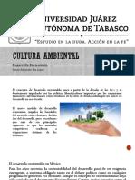 Desarrollo_Sustentable_Acti_10.pptx