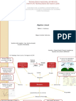 Mapa mental de vectores